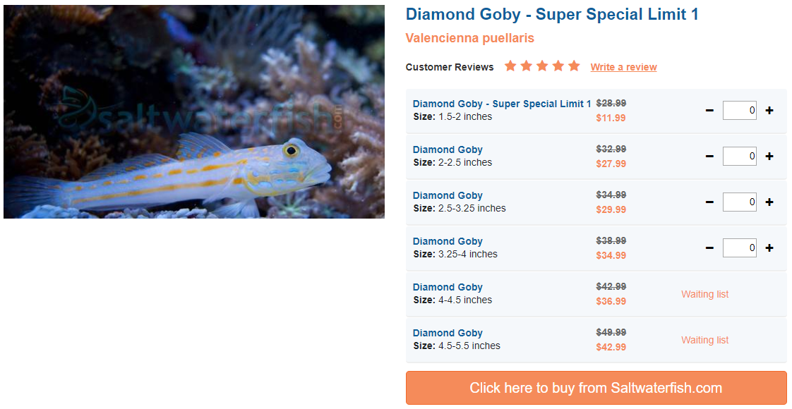diamond-goby.png