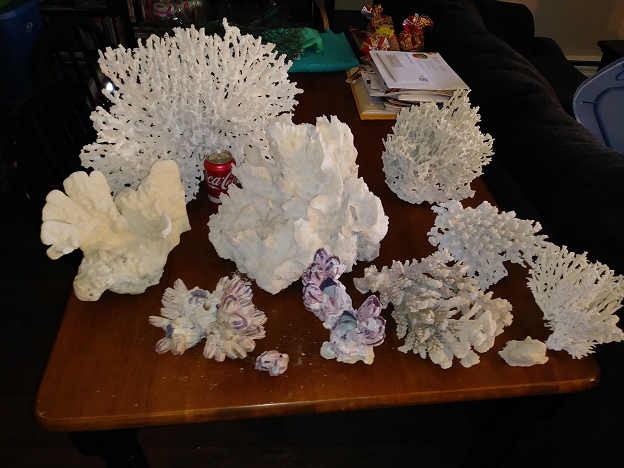 Dry corals 1.png