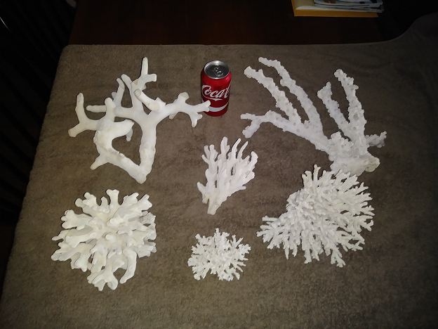 Hard corals 1.png