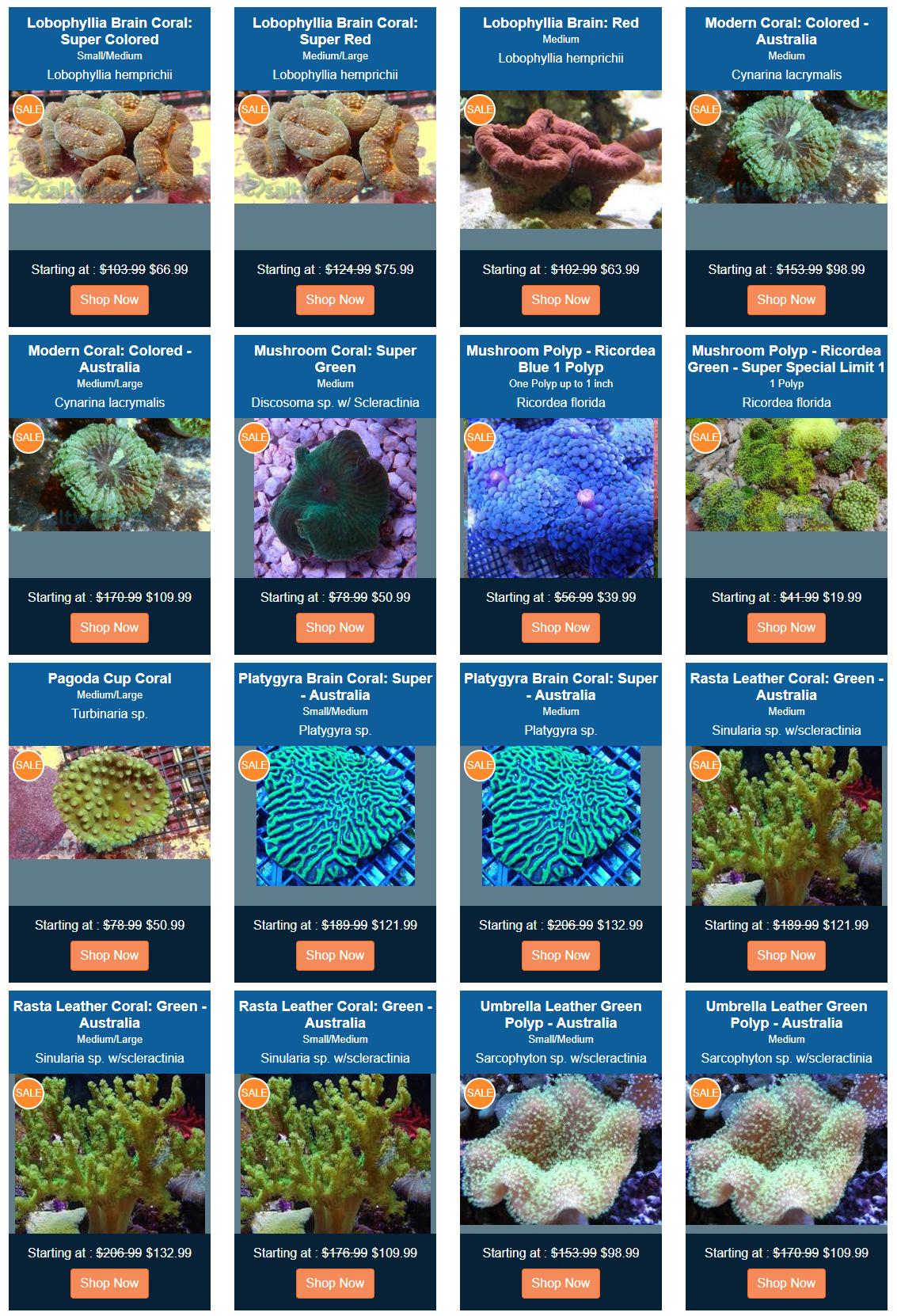 on-sale-coral.jpg