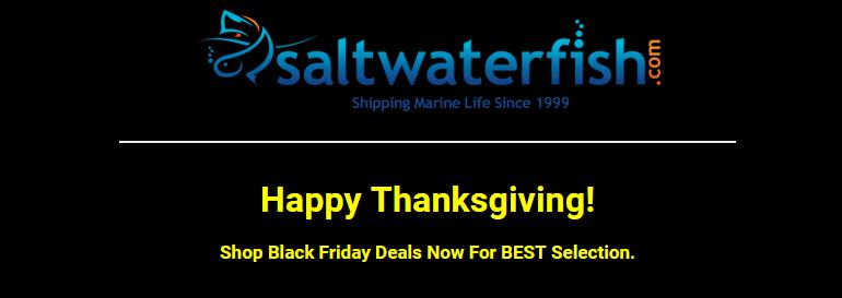 saltwaterfish-logo-blackfriday.png