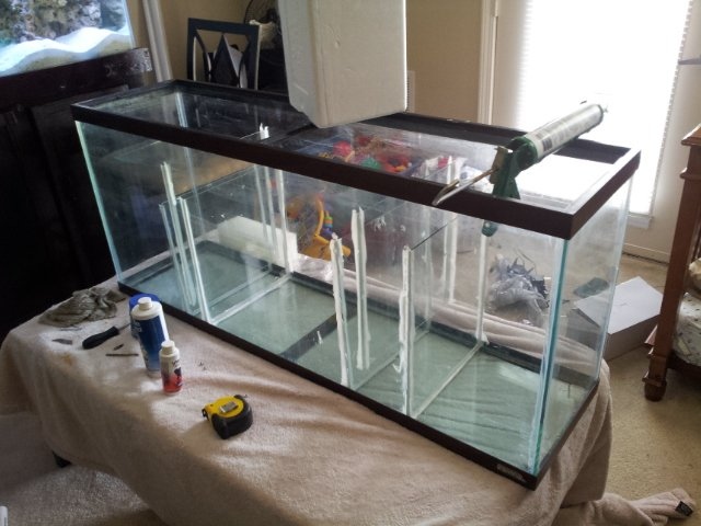 this video was from when i first completed the stand and canopy. the small filter was replaced with the refugium i made from a 55 gallon tank. & My 125 gallon Reef Tank | Saltwaterfish Forum