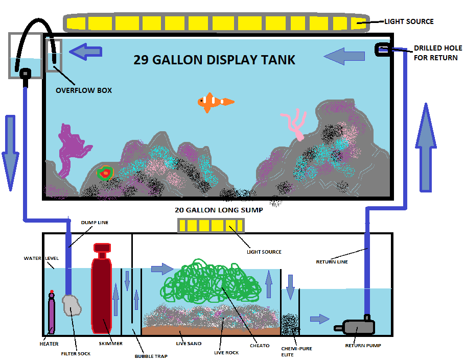 Need advice on my layout saltwaterfish forum for How to make saltwater for fish