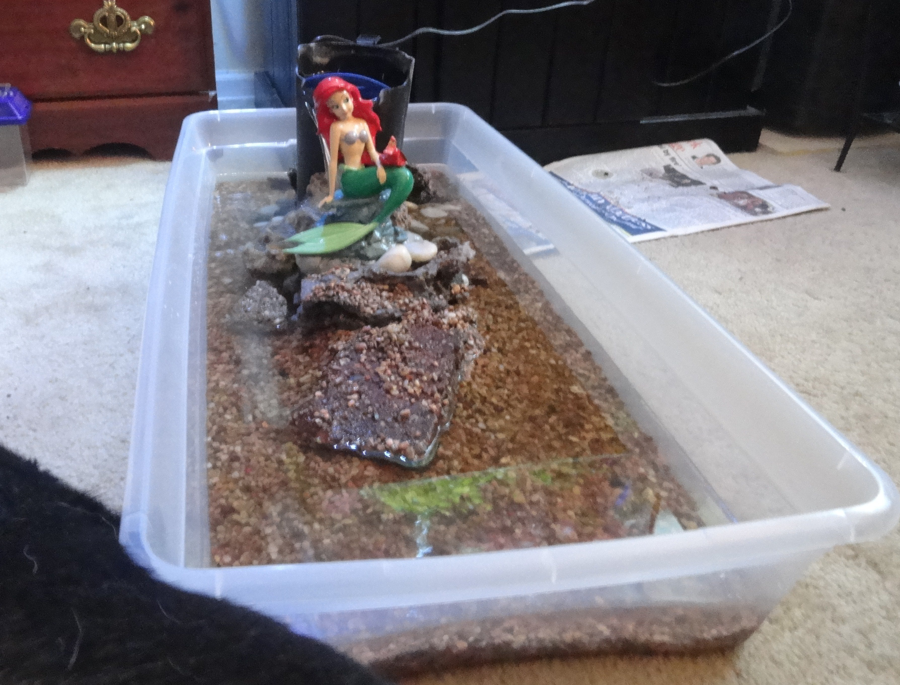 ... that hillbilly is crazy you can tell it s a little girls turtle tank