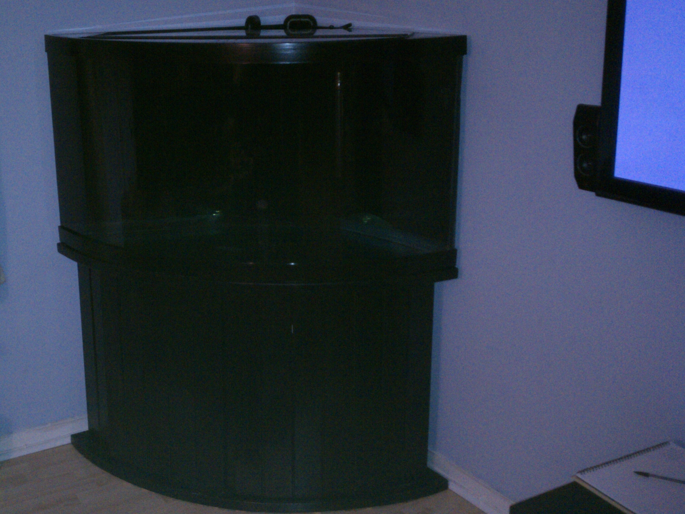 All Filled With Water And Painted Black Including The Back 2 Walls