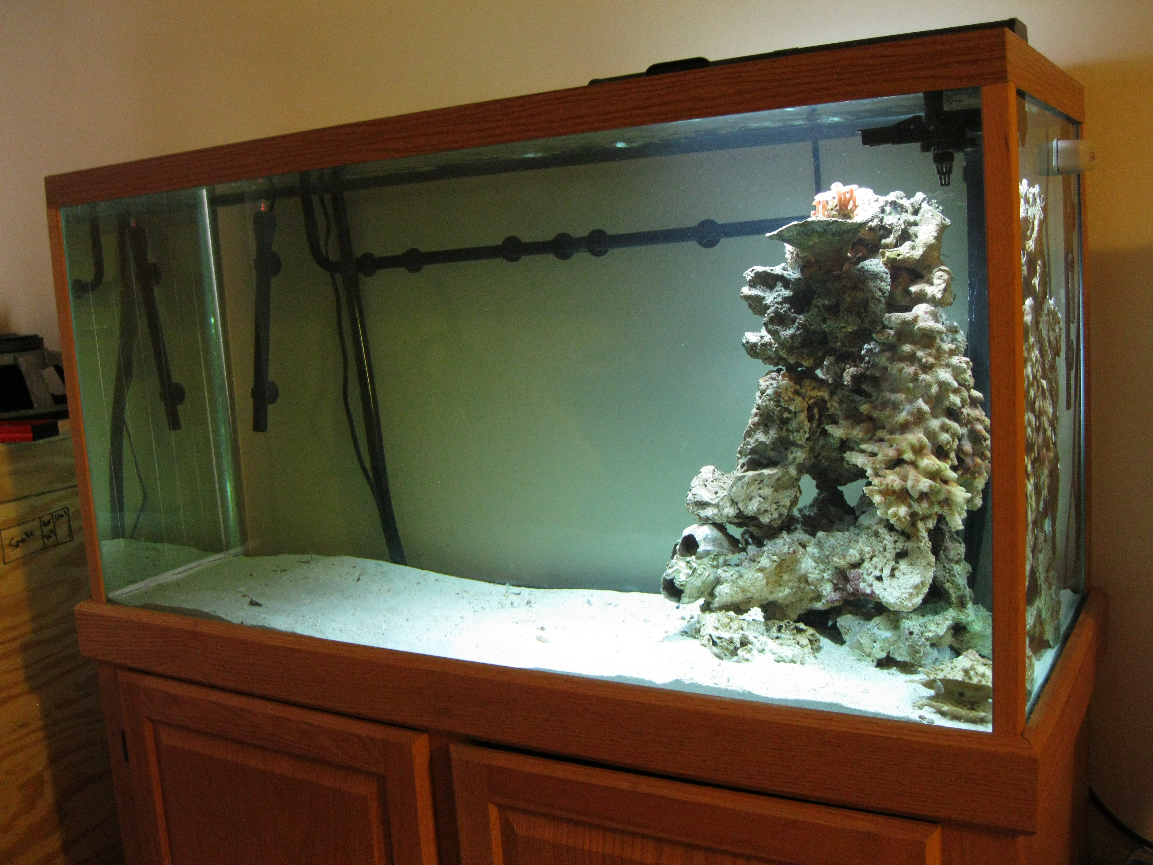 My new 90g Tank Project