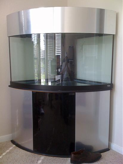 I have a 90 gal tank and noting to put in it!!!!!!!1 pleez help!!!!?