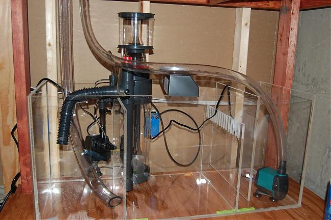 Post your    diagram    of your sump   plumbing      Saltwaterfish Forums for Fish Lovers