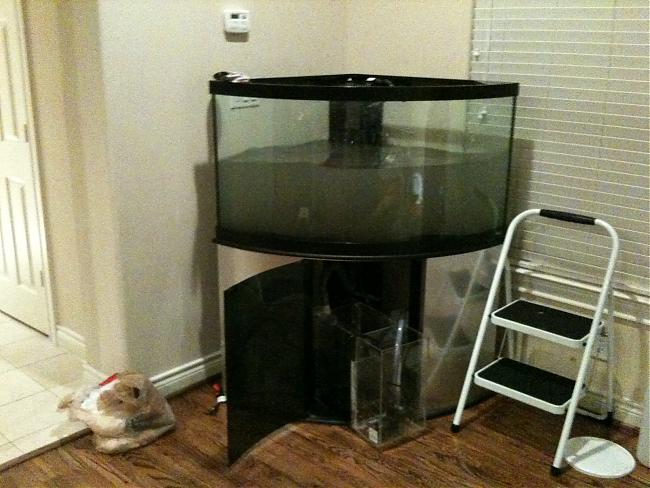 90 Gallon Corner Tank Saltwaterfish Com Forums For Fish