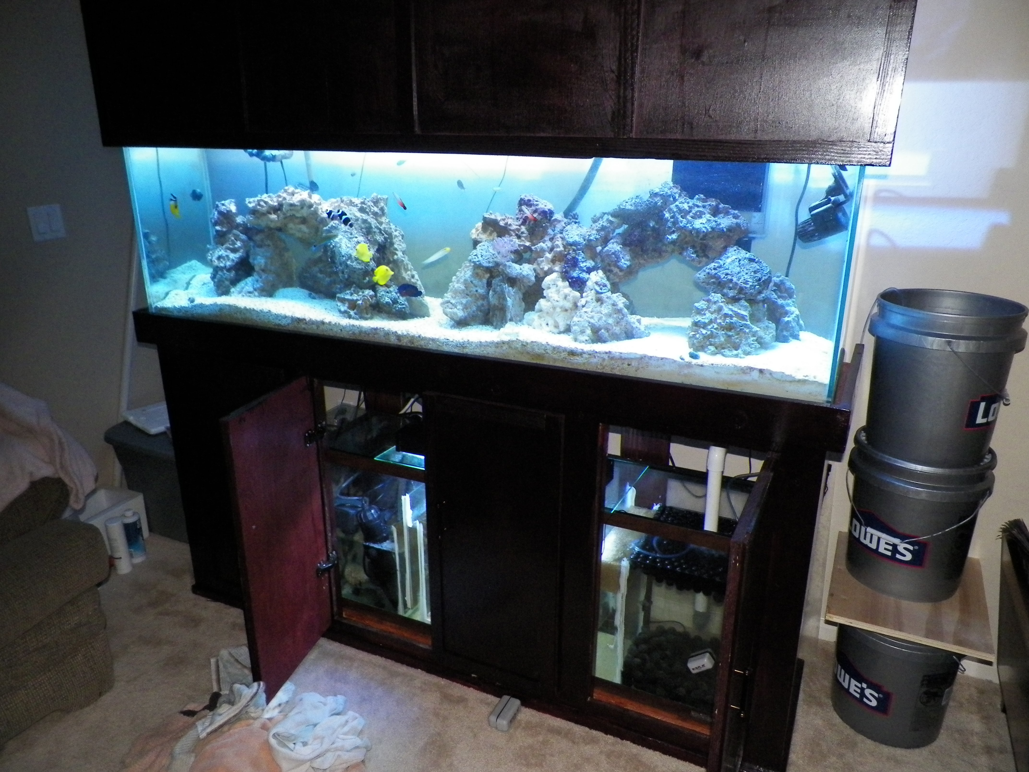 My 125 gallon reef tank saltwaterfish forum for 125 gallon fish tank stand
